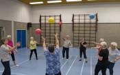 Effectief Actief beweegprogramma's voor ouderen