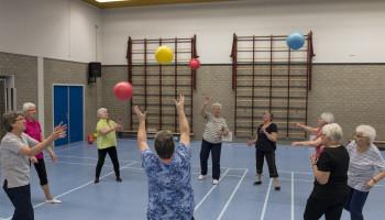Effectieve beweegprogramma's voor ouderen