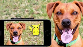 Pokémon Go van 1-aprilgrap tot bewegingsstimulerende interventie