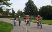 Etalagebenen: met looptraining mobiliteit terugwinnen