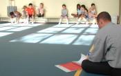 Hoeveel vakleerkrachten lichamelijke opvoeding zijn er in Nederland?