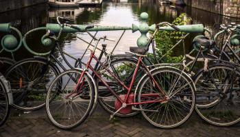 Breng gezondheid in kaart met de Wijkscan