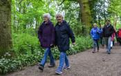 Deltaplan Dementie: Laat het brein niet indutten