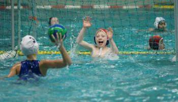 Sport A tot Z: Waterpolo