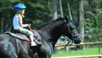 Sport A tot Z: Paardrijden