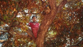 Je kind zoekt grenzen op: dit is waarom
