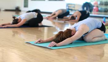 Iyengar versus Hatha yoga
