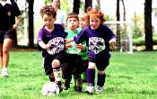 Sport Toekomstverkenning: reacties uit het veld - 2