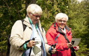 Inzicht in sport- en beweegtechnologie voor senioren
