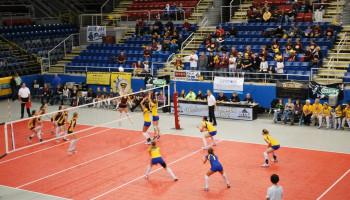 Blessurepreventie bij volleyballers