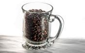 Cafeïne heeft bij mannen en vrouwen hetzelfde effect op de prestatie
