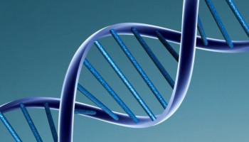 Genetische test is zonde van het geld