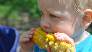 Lekker Fit! Kinderopvang: bewegen voor kleintjes in de dagelijkse praktijk