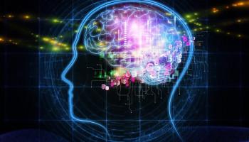 Cognitieve training heeft potentie, maar onderbouwing ontbreekt veelal