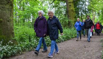 Ouderen langer thuis laten wonen door bewegen: inzichten voor professionals
