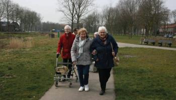 Bewegen als middel tegen eenzaamheid bij alleenstaande ouderen met fysieke beperkingen